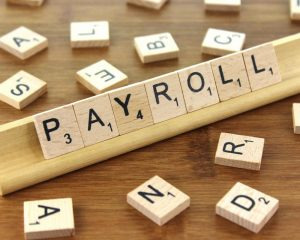 Payroll services for your company